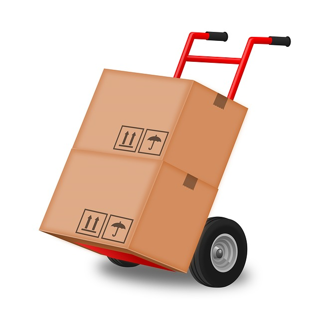 freight-andrew auto transport
